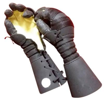 Sparring Gloves Special